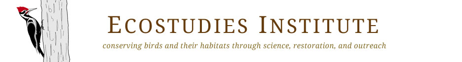 Ecostudies Institute | Bird Conservation, Science & Outreach