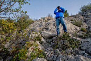 Birding on Cliff