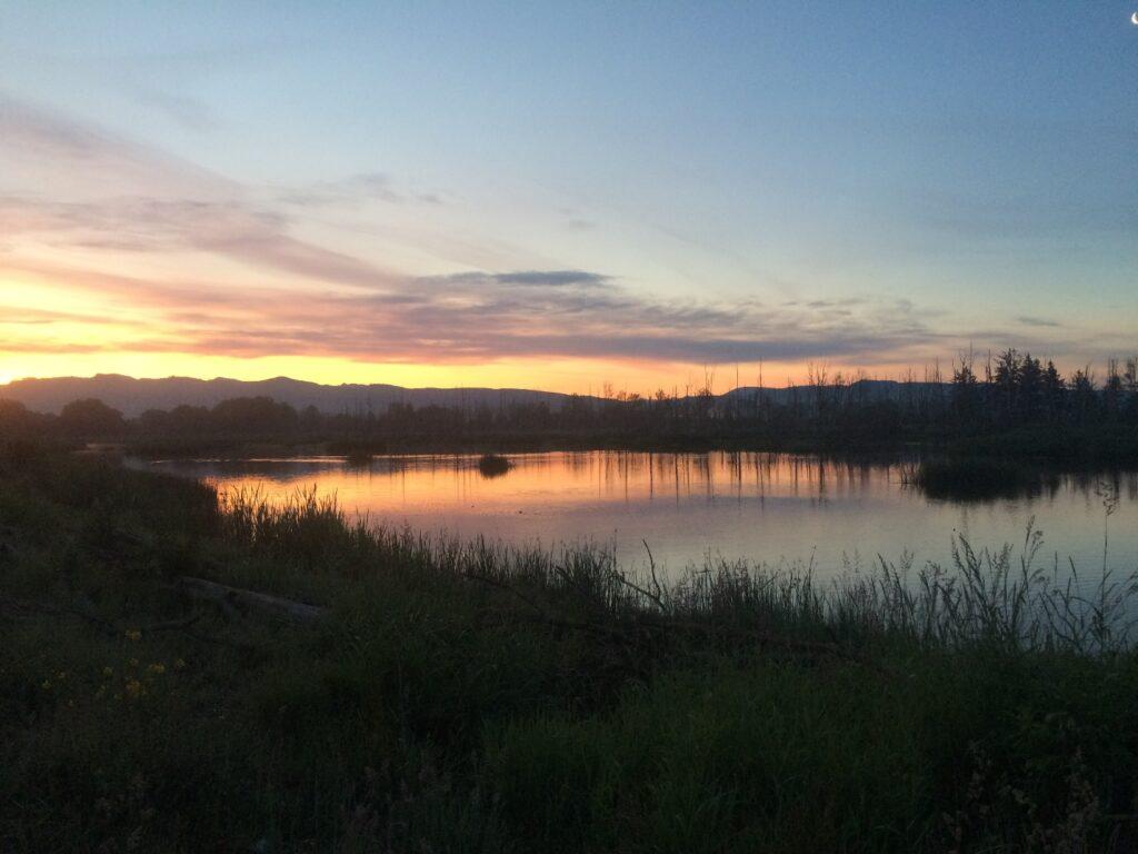 Sunrise Wiley Slough