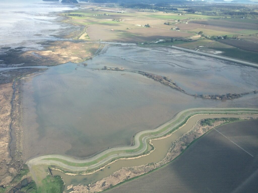 Fir Island Estuary Restoration project from the air.